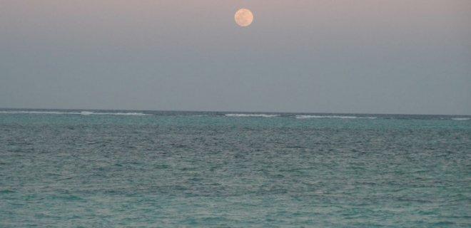 rüyada bulanık deniz görmek